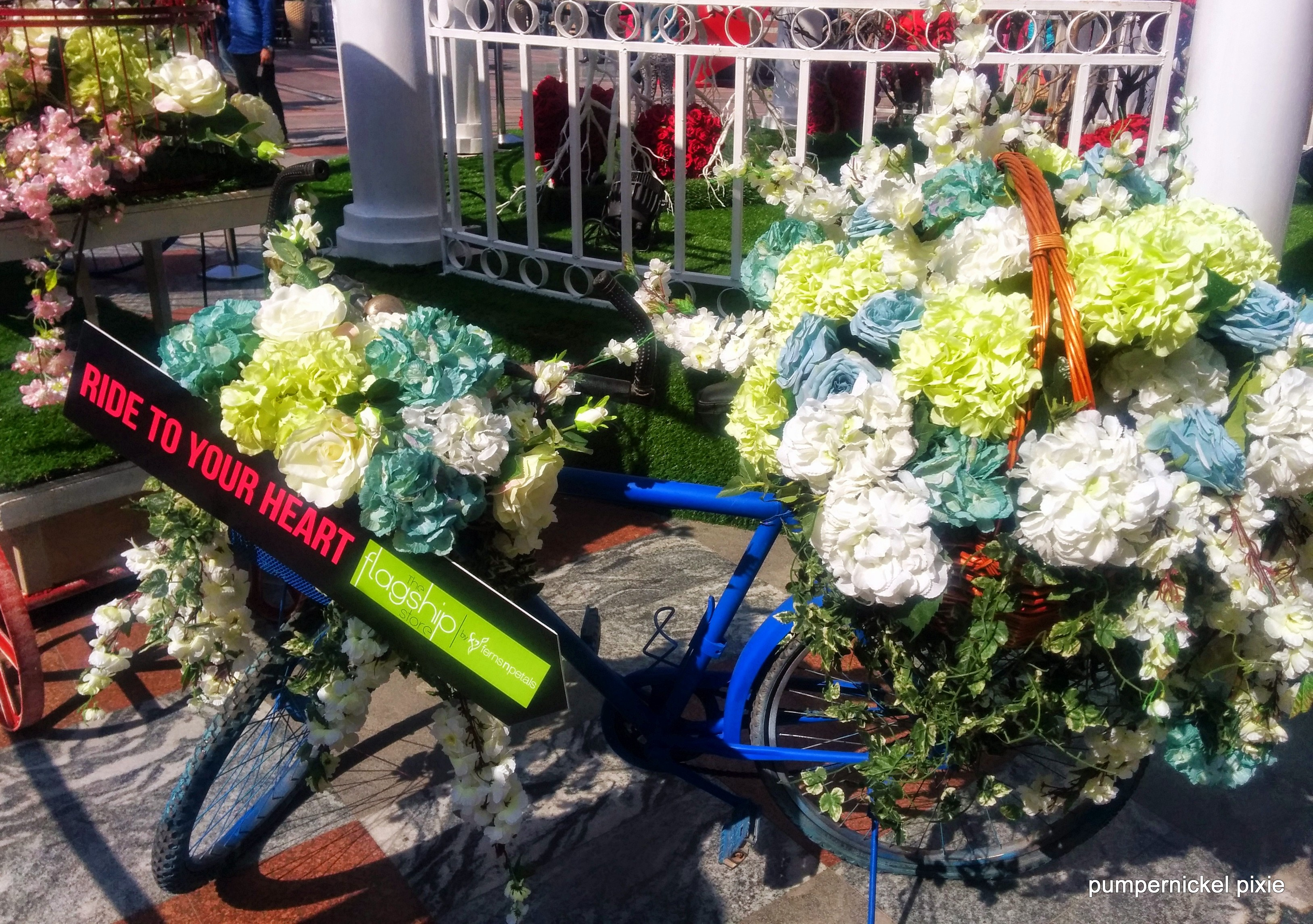 flower bicycle blue valentines photography on pumpernickel pixie