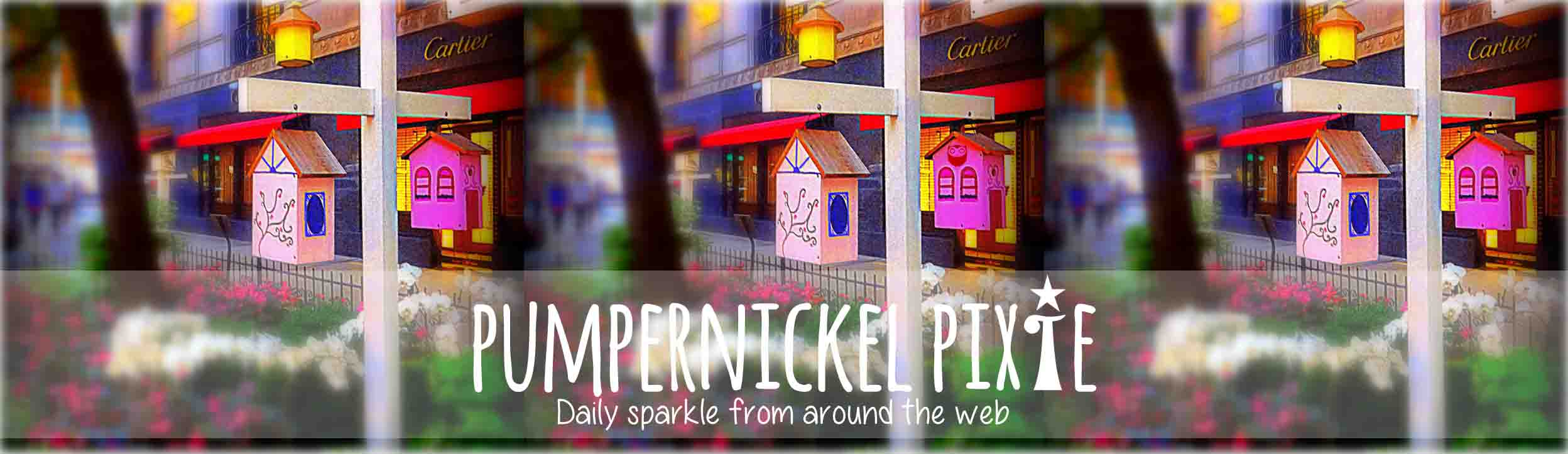 Pumpernickel Pixie
