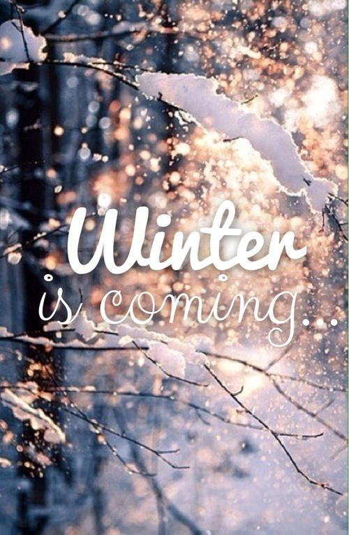 winter, year end, holidays, november, cold weather, sweather weather, chill, snow, christmas, new years, festive season, holiday season, 2015, 2016, hot chocolate, spiked coffee, knitwear, slow down, joyful, welcome winter, winter is coming, winter activity, winter objects, pumpernickel pixie