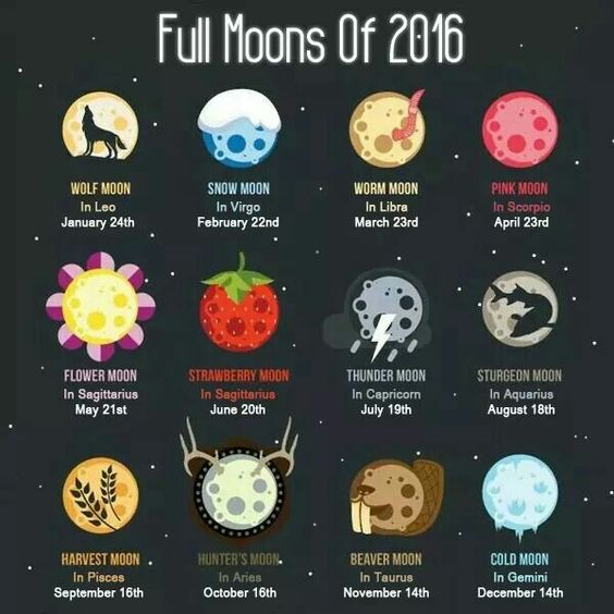 full moon, march moon, spring moon, seed moon, worm moon, moon magic, moon energy, full moon magic, full moon energy, intentions, believe, manifest, new beginings, de-clutter, spring, blessings, spring moon magic, jyo, pumpernickel pixie