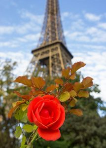 paris france europe travel pumpernickel pixie