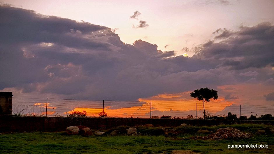 golden sky, sunset, nature, beauty, landscape, evening sky one week one photo on pumpernickel pixie