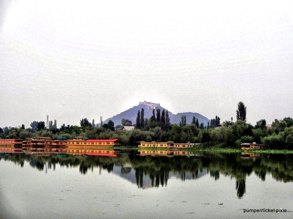 kashmir, srinagar, india, leh, ladakh, mountain, hills, nature, travel, zen, buddhist, monasteries, peace, blessed, beautiful, calm, happy, positive, gratitude, incredible india, woods, lakes, jammu, forest, paradise on earth, beauty, tradition, rugged, untouched, raw, indian army, personal, pumpernickel pixie