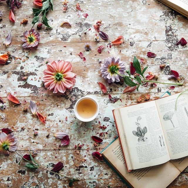 art design beauty books crafts diy fashion film music food health nutrition fitness owls photography quotes affirmations spirituality zen travel weddings yoga weekly picks from the internet goooglebun fridays weekly web round up on pumpernickel pixie by jyo