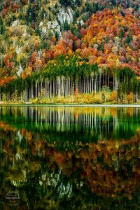 travel, fall, autumn, september, october, checklist, fall things to do, pumpkin patch, road trip, corn maze, hayride, fall activities, fall, apple picking, orchards, forest, walks, woods, carnival, fair, festival, fall events, road trip, countryside, vermont, camping, bonfire, stargazing, pumpernickel pixie
