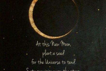 full moon, march moon, spring moon, seed moon, worm moon, moon magic, moon energy, full moon magic, full moon energy, intentions, believe, manifest, new beginings, de-clutter, spring, blessings, spring moon magic, jyo, pumpernickel pixie