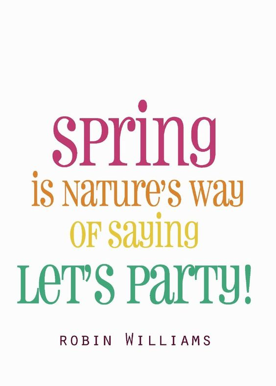 spring quotes, spring, spring equinox, international day of happiness, happy, grateful, thankful, positive, spring rituals, happiness rituals, de-clutter, organise, go green, gardening, plant something, letting go, let go, blooms, nature, outdoors, feel the sun, new beginnings, fresh starts, positive vibes, good energy, flourish, gratitude, affirmations, spring moon, spring magic, get your happy on, happiness, #day of happiness, #spring 2017, jyo, pumpernickel pixie